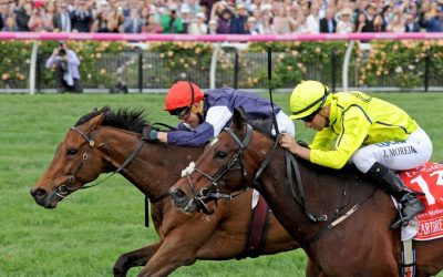 Why investing is (and isn't) like the Melbourne Cup